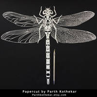 Papercut - Dragonfly - Papercutting - Paper - Art by ParthKothekar