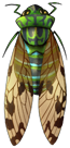 Emerald Cicada by momma-kuku