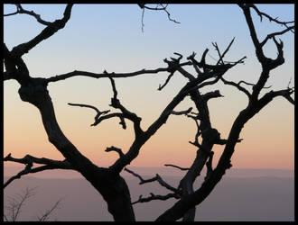 Sunset by JapaneseStarlight