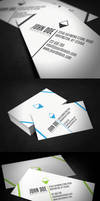 Diagonal Business Card by glenngoh