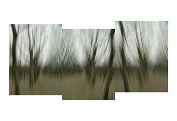 Quinconces Trees remix by FiLH