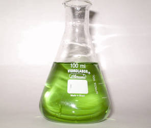 Erlenmeyer Flask by mhorsi