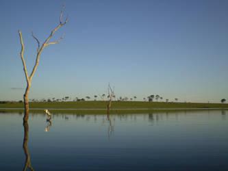 River 1 by mhorsi