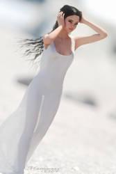 Sheer Elegance3 by mattymanx