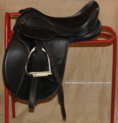 Saddle stock reference by MustangStock