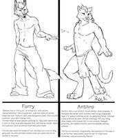 Furry/zoanthrope VS Anthro by DragonXborne