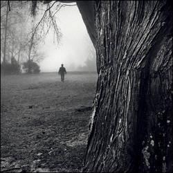 going through.... II by Tom-Ripley