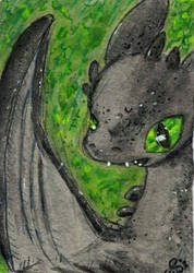 Toothless In The Green by goatsarecute