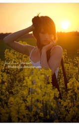 _Twilight. by josefinejonssonphoto
