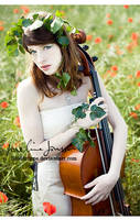_the symphony. by josefinejonssonphoto
