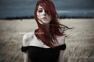 _heartbeat. by josefinejonssonphoto