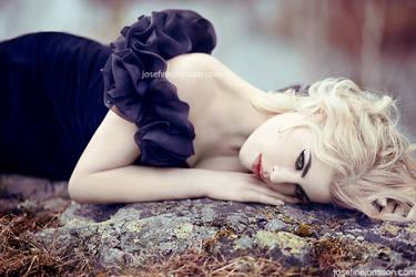 _the romance. by josefinejonssonphoto