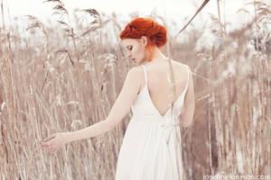 _ivory. by josefinejonssonphoto
