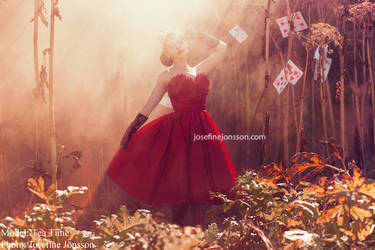 _Queen of hearts. by josefinejonssonphoto