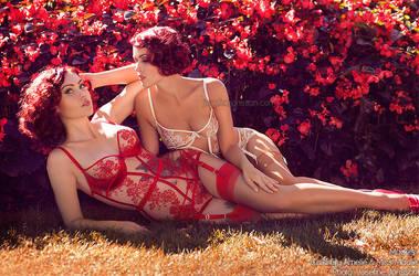 _Red Romance. by josefinejonssonphoto