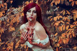 _lace and blood III. by josefinejonssonphoto