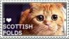 I love Scottish Folds by WishmasterAlchemist