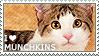 I love Munchkins by WishmasterAlchemist