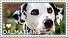 I love Dalmatians by WishmasterAlchemist
