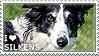 I love Silken Windhounds by WishmasterAlchemist