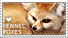 I love Fennec Foxes by WishmasterAlchemist