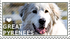 I love Great Pyrenees by WishmasterAlchemist