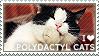 I love Polydactyl Cats by WishmasterAlchemist