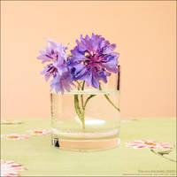 Summer Fragrance by WishmasterAlchemist