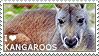 I love Kangaroos by WishmasterAlchemist