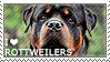I love Rottweilers by WishmasterAlchemist
