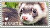 I love Ferrets by WishmasterAlchemist