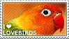 I love Lovebirds by WishmasterAlchemist