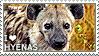 I love Hyenas by WishmasterAlchemist