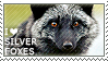 I love Silver Foxes by WishmasterAlchemist