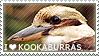 I love Kookaburras by WishmasterAlchemist