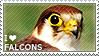 I love Falcons by WishmasterAlchemist