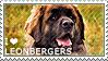 I love Leonbergers by WishmasterAlchemist
