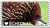 I love Echidnas by WishmasterAlchemist