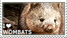 I love Wombats by WishmasterAlchemist