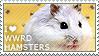 I love Winter White Russian Dwarf Hamsters by WishmasterAlchemist