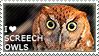 I love Screech Owls by WishmasterAlchemist