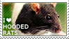 I love Hooded Rats by WishmasterAlchemist
