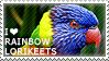 I love Rainbow Lorikeets by WishmasterAlchemist