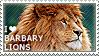 I love Barbary Lions by WishmasterAlchemist