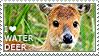 I love Water Deer by WishmasterAlchemist