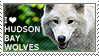 I love Hudson Bay Wolves by WishmasterAlchemist