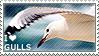 I love Gulls by WishmasterAlchemist