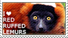 I love Red Ruffed Lemurs by WishmasterAlchemist