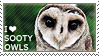 I love Sooty Owls by WishmasterAlchemist