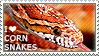 I love Corn Snakes by WishmasterAlchemist